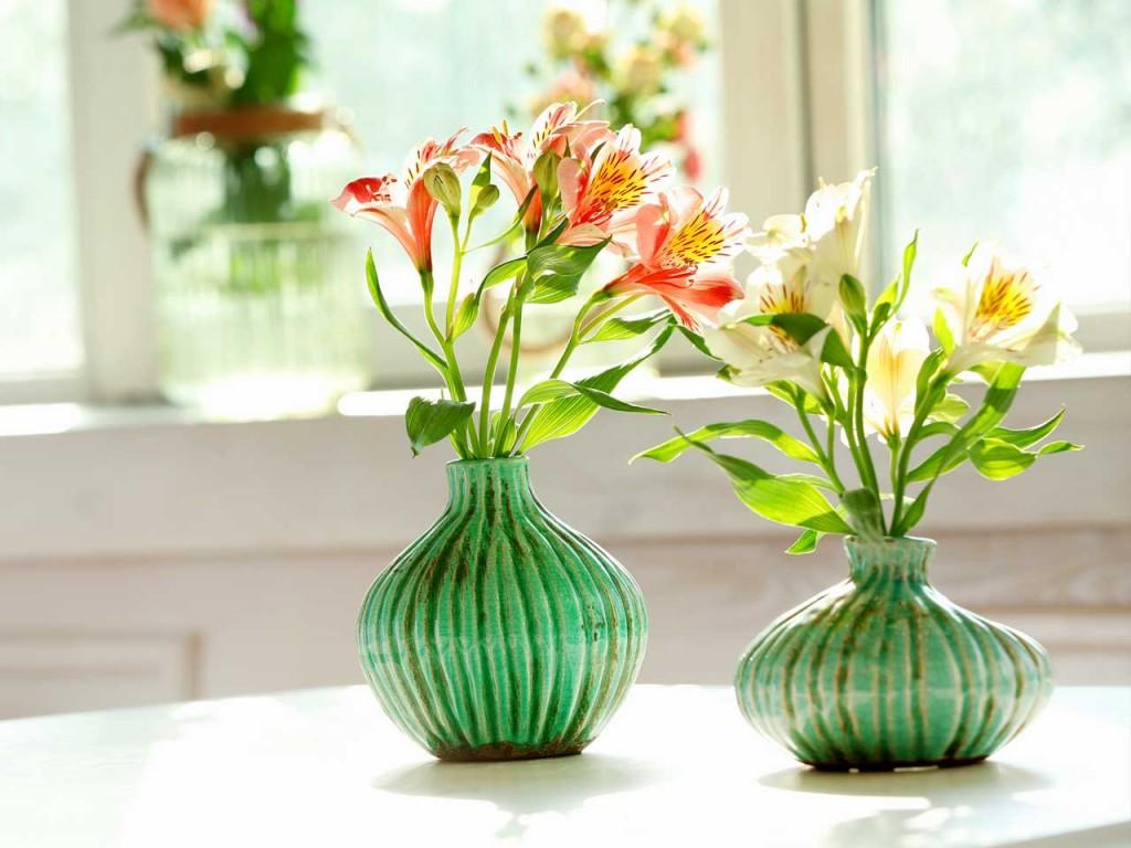 Những chậu hoa nhỏ xinh là lựa chọn được nhiều người ưa chuộng