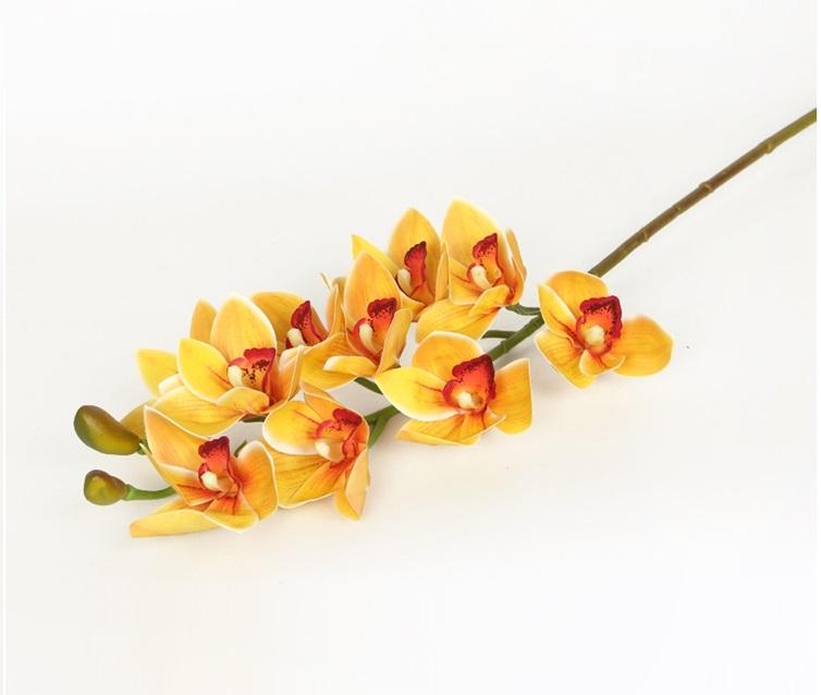 Ý nghĩa hoa địa lan gắn với nhiều ý nghĩa tốt đẹp.
