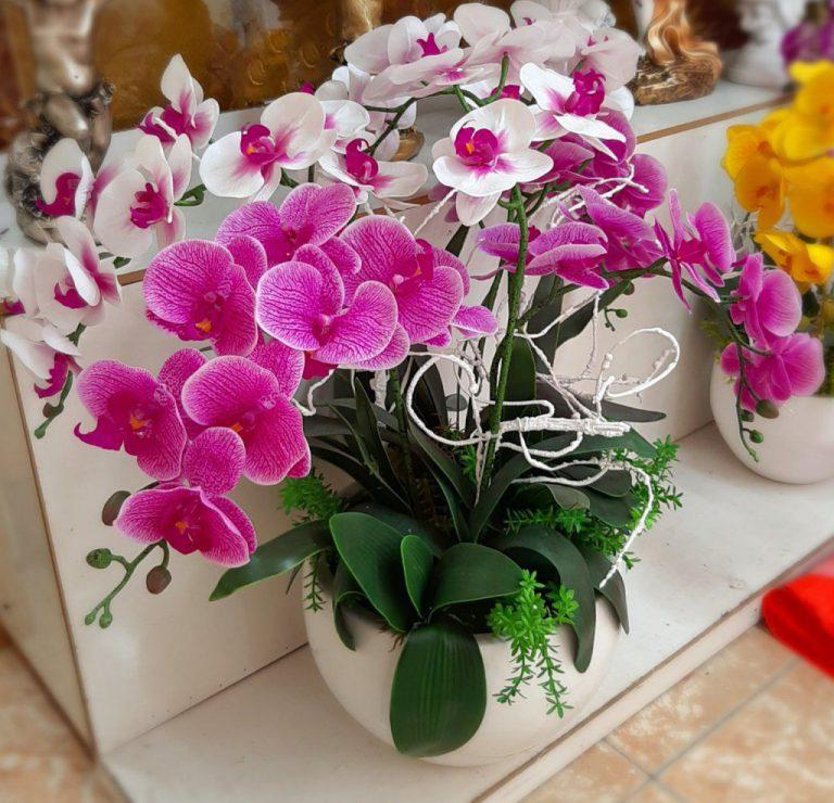 Ý nghĩa hoa lan hồ điệp màu tím tượng trưng cho tình yêu thuỷ chung